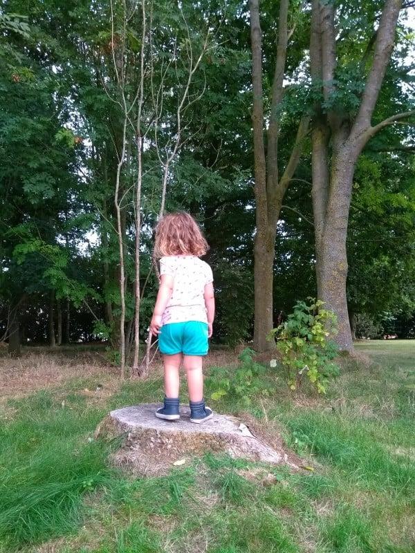 N speelt op een boomstronk tijdens een stop op een roadtrip